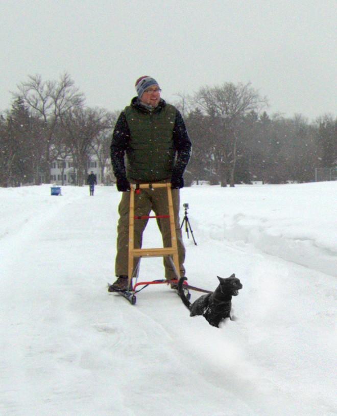 cat sled beau